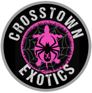 Crosstown Exotics:  Traveling Reptile & Bug Show